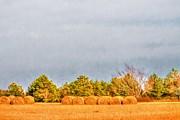 Barry Jones - Hay - Farm - Rural - Winter