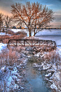 American Beauty Photo Framed Prints - Winters Bridge Framed Print by Scott Mahon