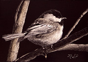 Chickadee Drawings Prints - Winters Day Print by Margaret Sarah Pardy