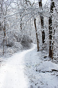 New England Snow Scene Prints - Winters Path 1 Print by Joe Sneekers