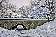 Central Park Prints - Winters Touch  Print by Madeline Ellis