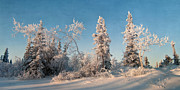 Wintery Print by Priska Wettstein