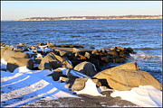 Wintry Day At The Bay Print by  Photographic Art and Design by Dora Sofia Caputo