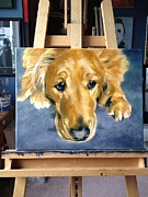 Diane Daigle - WIP Golden Retriever