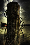 Metal Pier Prints - Wired  Print by Erik Brede