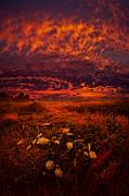 Phil Koch - Wisconsin Twilight