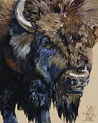 Bison Art - Wise Plains Drifter by J W Baker