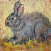 Donna Shortt Painting Posters - Wise Rabbit Poster by Donna Shortt