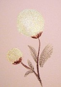 Spring Scenes Pastels - Wish Blossoms by Christine Corretti
