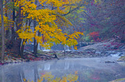 Wissahickon Posters - Wissahickon Morning in Autumn Poster by Bill Cannon