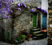 France Doors Framed Prints - Wisteria on Stone House Framed Print by Lainie Wrightson