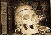 Skull Photos - Witches Bookshelf by Edward Fielding