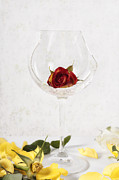 Wine Glass Posters - Withered Red Rose Poster by Joana Kruse