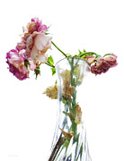 Vase Of Flowers Posters - Withering Away Poster by Shawna  Rowe