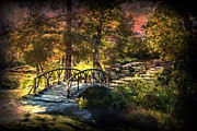Tamyra Ayles Prints - Woddard Park Bridge II Print by Tamyra Ayles
