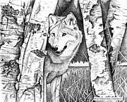 Brian Gilna - Wolf 02