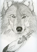 Wolves Drawings - Wolf and Feather by Eva Ason