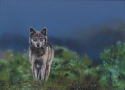 Dusk Pastels Prints - Wolf Before Dusk Print by Jackie  Hill