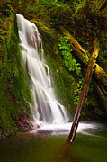 Wolf Creek Metal Prints - Wolf Creek Falls Metal Print by Don Hall