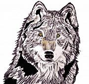 Canine Mixed Media Prints - Wolf EX Print by Crystal Hubbard