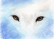 Wolf Pastels Framed Prints - Wolf Eyes Framed Print by Janelle Schneider
