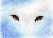 Wolf Eyes Print by Janelle Schneider