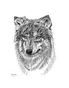 Carl Genovese - Wolf II