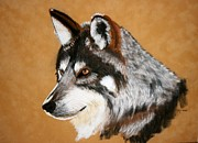 Wild Animal Pastels Posters - Wolf Poster by Michele Turney