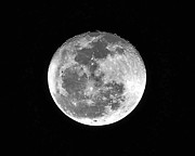 Man-in-the-moon Metal Prints - Wolf Moon Waning Metal Print by Al Powell Photography USA