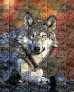 Marble Eyes Framed Prints - Wolf On Marble Tile Framed Print by Sheila Savage
