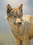 Wolf Portrait Print by Paul Krapf