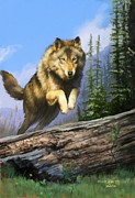 Attack Paintings - Wolf Run by Rob Corsetti