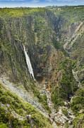 Tim Hester - Wollomombi Falls