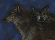 Wolves Pastels Framed Prints - Wolves Framed Print by Becca Engdahl
