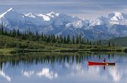 Snow-covered Landscape Prints - Woman Canoeing In Wonder Lake Alaska Print by Michael DeYoung