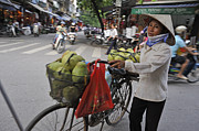 Sami Sarkis Posters - Woman carrying fruit on bike Poster by Sami Sarkis