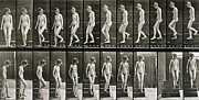 Black And White Prints Prints - Woman descending steps Print by Eadweard Muybridge