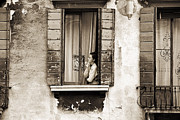Apartment Framed Prints - Woman gazing out of a window contemplating Framed Print by Stephen Spiller