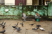 Flying Birds Prints - Woman selling pigeon food in Yangon Print by Ruben Vicente