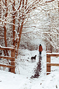 Winter Prints Posters - Woman Walking Dog Poster by Christopher Elwell and Amanda Haselock