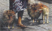 Dog Walking Prints - Woman Walking Three Dogs  Print by Nurit Shany
