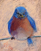 Bluebird Pastels Framed Prints - Wonder Bird Framed Print by Billie Colson