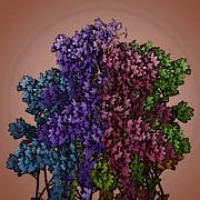 Wonderful Colors 1 Print by Pepita Selles