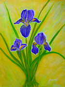 Original Paining Framed Prints - Wonderful Iris Flowers 2 Framed Print by Oksana Semenchenko