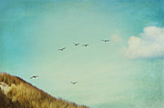 Flying Seagulls Art - Wonderful Island by Angela Doelling AD DESIGN Photo and PhotoArt