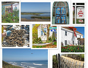 Barbara Mcdevitt Posters - Wonderful Wellfleet Poster by Barbara McDevitt