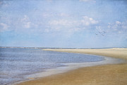 St. Simons Island Art - Wonderful World by Kim Hojnacki