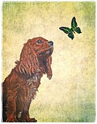 King Charles Spaniel Prints - Wonders of Nature Print by Edward Fielding