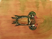 Wood Duck Paintings - Wood Duck at Dawn by Margaret Voss