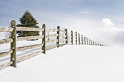Gary Heller Prints - Wood fence - old wood fence in the pristine white snow Print by Gary Heller